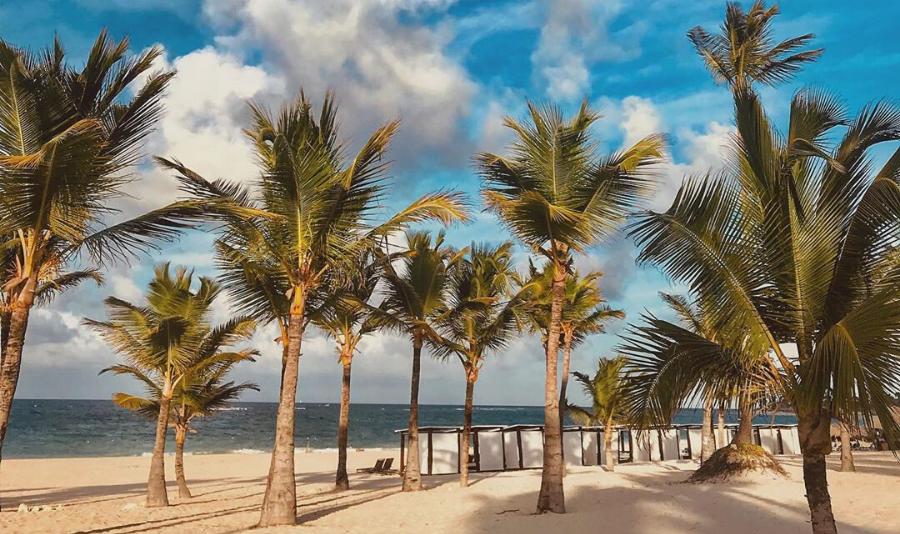 Санитарные нормы и протоколы безопасности отелей в Доминикане