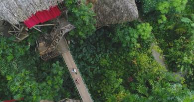 Названы самые востребованные экскурсии Доминиканы после изоляции