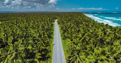 Летний сезон в Доминиканской Республике приближается к показателям лета 2019